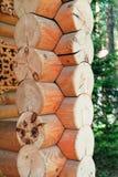 Κούτσουρα που διπλώνονται σε ένα blockhouse - ο τοίχος ενός ξύλινου σπιτιού Στοκ Φωτογραφίες