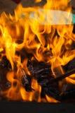Κούτσουρα σχαρών Burrning Στοκ Εικόνες