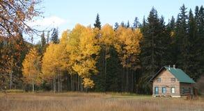 κούτσουρο καμπινών Στοκ φωτογραφία με δικαίωμα ελεύθερης χρήσης