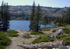 κούτσουρο λιμνών στοκ εικόνα με δικαίωμα ελεύθερης χρήσης
