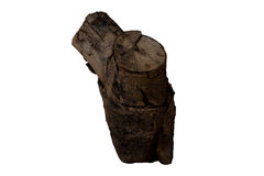 Κούτσουρο που απομονώνεται ξύλινο Στοκ εικόνες με δικαίωμα ελεύθερης χρήσης