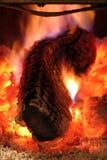 κούτσουρο πυρκαγιάς στοκ φωτογραφίες