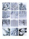 Κολάζ Ιανουάριος Στοκ Εικόνες