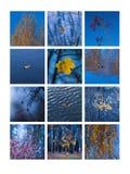 Κολάζ Νοέμβριος Στοκ Εικόνες
