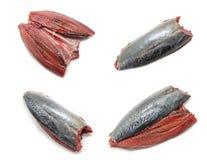 Κολάζ του ακατέργαστου και φρέσκου σκουμπριού Ισπανικό σκουμπρί Caballa Στοκ φωτογραφίες με δικαίωμα ελεύθερης χρήσης