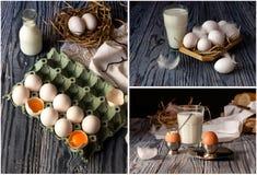 Κολάζ των αυγών στοκ φωτογραφίες με δικαίωμα ελεύθερης χρήσης