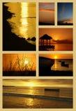 Τροπικό κολάζ ηλιοβασιλέματος Στοκ εικόνα με δικαίωμα ελεύθερης χρήσης