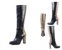 Κολάζ των μποτών δέρματος ανοίξεων παπουτσιών σε ένα άσπρο υπόβαθρο, ιταλικά παπούτσια δέρματος των γυναικών Στοκ Εικόνες