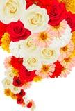 Κολάζ των λουλουδιών στο λευκό Στοκ Φωτογραφία