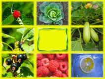 Κολάζ των υγιών τροφίμων Στοκ Εικόνα
