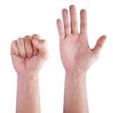 Κολάζ των χεριών ατόμων που απομονώνονται στο λευκό Στοκ Εικόνα