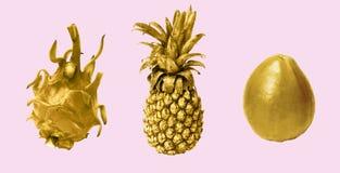 Κολάζ των χρυσών φρούτων στο ρόδινο υπόβαθρο Στοκ Εικόνες