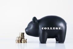 Κολλέγιο τράπεζας Piggy Στοκ φωτογραφία με δικαίωμα ελεύθερης χρήσης