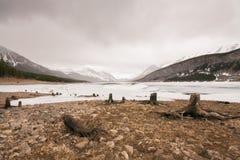 Κολοβώματα δέντρων στη λίμνη ψεκασμού στοκ φωτογραφία με δικαίωμα ελεύθερης χρήσης