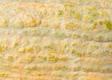 κολοκύθα φλούδας Στοκ φωτογραφία με δικαίωμα ελεύθερης χρήσης