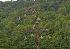 Κολοκύθα Birdhouses Στοκ φωτογραφία με δικαίωμα ελεύθερης χρήσης