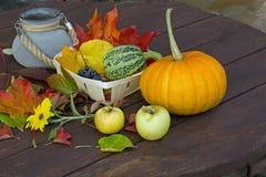 Κολοκύθες και μήλα, γκρίζο βάζο, κόκκινα φύλλα Στοκ Εικόνα