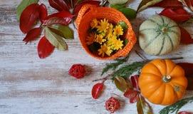 Κολοκύθες και φύλλα φθινοπώρου στο ξύλινο υπόβαθρο Στοκ Φωτογραφία