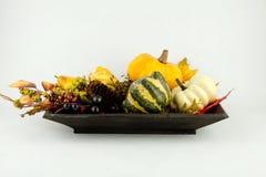 Κολοκύθες και φύλλα φθινοπώρου Στοκ Εικόνες