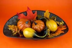 Κολοκύθες & φύλλα φθινοπώρου Στοκ Εικόνα