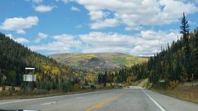 Κολοράντο χρυσό Aspens στοκ φωτογραφίες με δικαίωμα ελεύθερης χρήσης