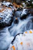Κολπίσκος βουνών που ρέει με το πεσμένο χιόνι και τα κίτρινα φύλλα εμπρός Στοκ φωτογραφίες με δικαίωμα ελεύθερης χρήσης