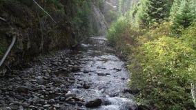 Κολπίσκος βουνών Στοκ εικόνα με δικαίωμα ελεύθερης χρήσης