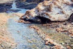 Κολπίσκος που τρέχει μέσω ενός τομέα το χειμώνα Στοκ Φωτογραφία