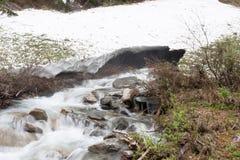 Κολπίσκος στα βουνά - εικόνα αποθεμάτων Στοκ Φωτογραφίες