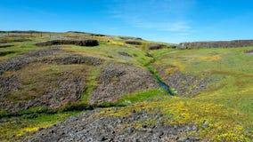 Κολπίσκος στην οικολογική κονσέρβα επιτραπέζιων βουνών Στοκ εικόνα με δικαίωμα ελεύθερης χρήσης