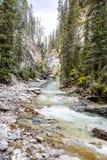 Κολπίσκος Johnston, εθνικό πάρκο Banff, Αλμπέρτα, Καναδάς Στοκ φωτογραφία με δικαίωμα ελεύθερης χρήσης