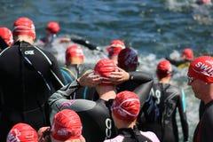 Κολυμβητές που προετοιμάζονται να εισαγάγει το νερό στοκ εικόνες