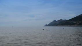 Κολυμβητές στο ήρεμο νερό απόθεμα βίντεο