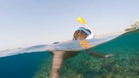 Κολυμπήστε με αναπνευτήρα κολυμπά στα ρηχά νερά με τα ψάρια κοραλλιών, Ερυθρά Θάλασσα, Αίγυπτος απόθεμα βίντεο