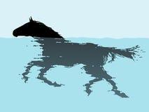 Κολυμπώντας άλογο ελεύθερη απεικόνιση δικαιώματος