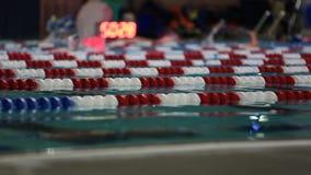 Κολυμπώντας πάροδοι απόθεμα βίντεο