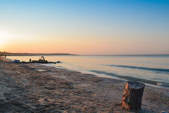 Κολόβωμα δέντρων στην παραλία Στοκ φωτογραφία με δικαίωμα ελεύθερης χρήσης