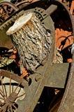 Κολόβωμα που αυξάνεται σε ένα εργαλείο, Στοκ εικόνα με δικαίωμα ελεύθερης χρήσης