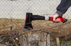 Κολόβωμα τσεκουριών και δέντρων Στοκ εικόνα με δικαίωμα ελεύθερης χρήσης