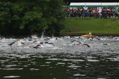 Κολύμβηση αθλητικής υγιής άσκησης Triathlon triathlete Στοκ εικόνες με δικαίωμα ελεύθερης χρήσης