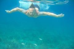 κολύμβηση ατόμων υποβρύχι&al Στοκ Φωτογραφίες