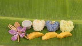 Κολλώδες ρύζι μάγκο, διάσημο επιδόρπιο της Ταϊλάνδης Στοκ Φωτογραφίες