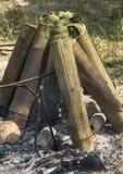 Κολλώδες ρύζι που ψήνεται στις ενώσεις μπαμπού, ταϊλανδικό επιδόρπιο. Στοκ φωτογραφία με δικαίωμα ελεύθερης χρήσης