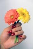 κράτημα λουλουδιών Στοκ φωτογραφία με δικαίωμα ελεύθερης χρήσης