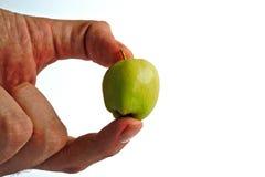 Κράτημα της μικροσκοπικής Apple Στοκ εικόνα με δικαίωμα ελεύθερης χρήσης