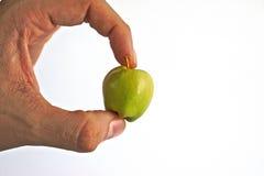 Κράτημα της μικροσκοπικής Apple Στοκ φωτογραφία με δικαίωμα ελεύθερης χρήσης