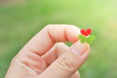 Κράτημα του κόκκινου φύλλου τριφυλλιού καρδιών στοκ φωτογραφία με δικαίωμα ελεύθερης χρήσης