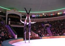 κράτος του Μινσκ τσίρκων του 2012 λευκορωσικό λευκορωσικό Στοκ φωτογραφίες με δικαίωμα ελεύθερης χρήσης