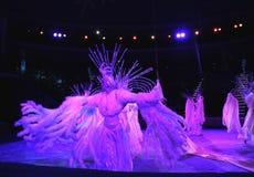 κράτος του Μινσκ τσίρκων του 2012 λευκορωσικό λευκορωσικό Στοκ Εικόνες