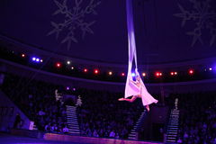 κράτος του Μινσκ τσίρκων του 2012 λευκορωσικό λευκορωσικό Στοκ φωτογραφία με δικαίωμα ελεύθερης χρήσης